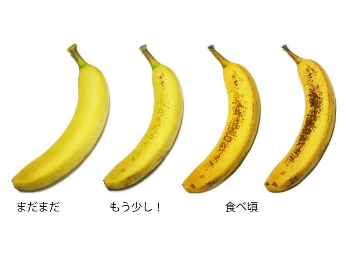 バナナの正しい食べ頃