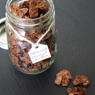 raw vegan chocolate coconut clusters