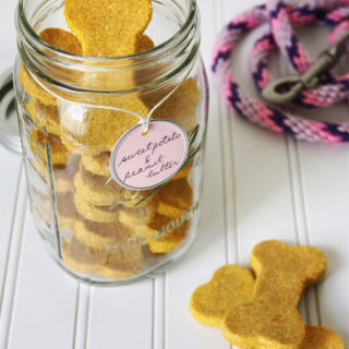 homemade sweet potato and peanut butter dog treats (vegan & grain free)